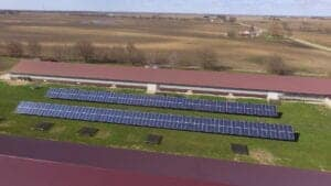Chicken farm with solar